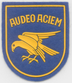 Audeo Aciem badge02